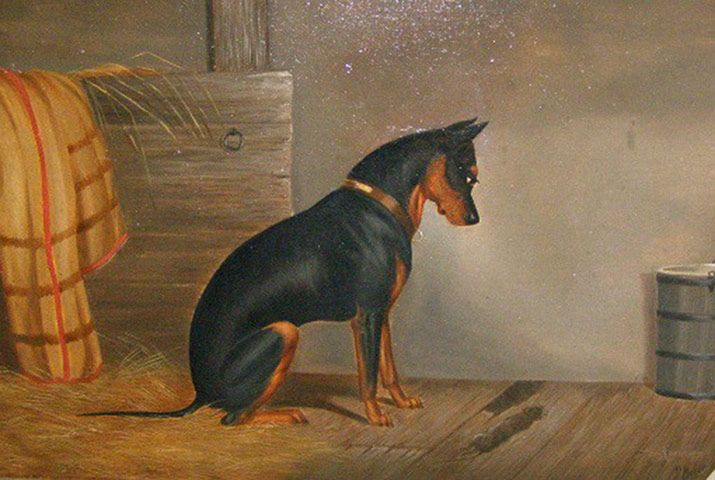 A Terrier's Tale: the Manchester Terrier through History is at the Kennel Club Art Gallery