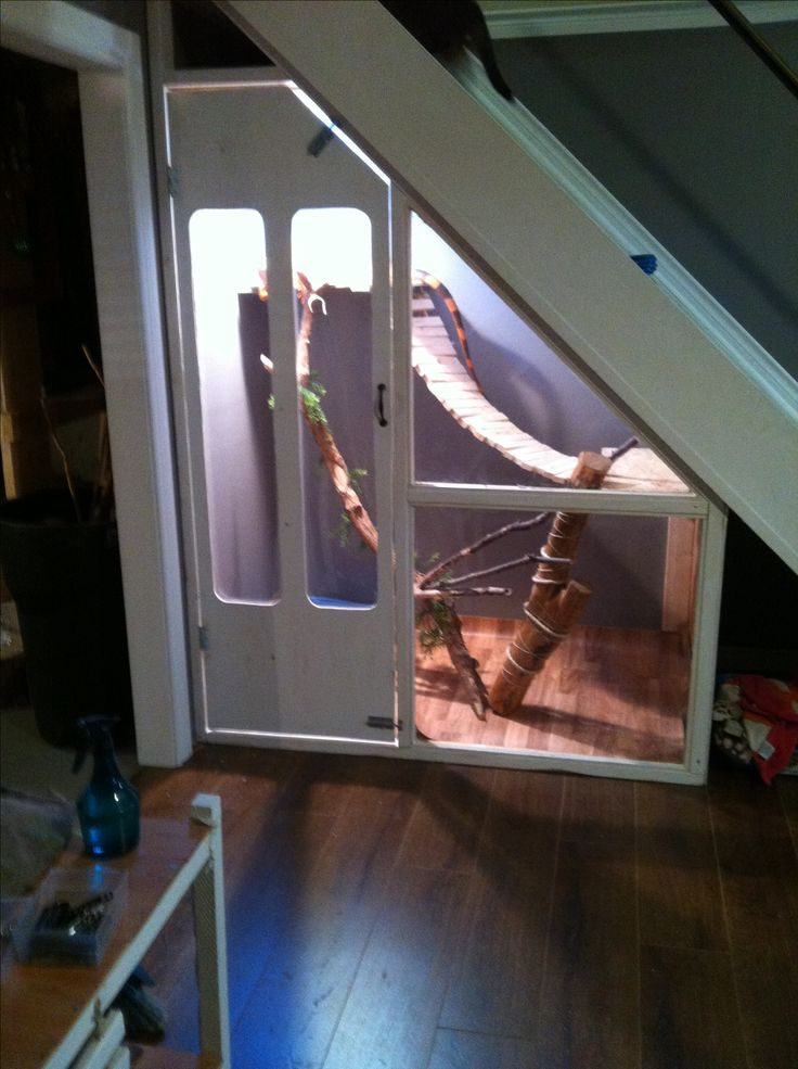 ♥ Pet Bird Stuff ♥ Would work for an aviary as well!! - Under the stairs reptile enclosure for green iguana