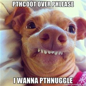 Phteven Dog