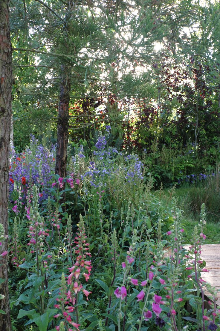 ''Wellbeing Wetlands'' from Gardens Now and inspired by Ocean Spray www.bloominthepark.com