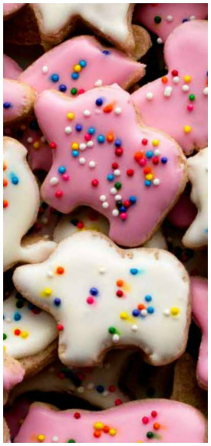 18+ Are animal crackers cookies images