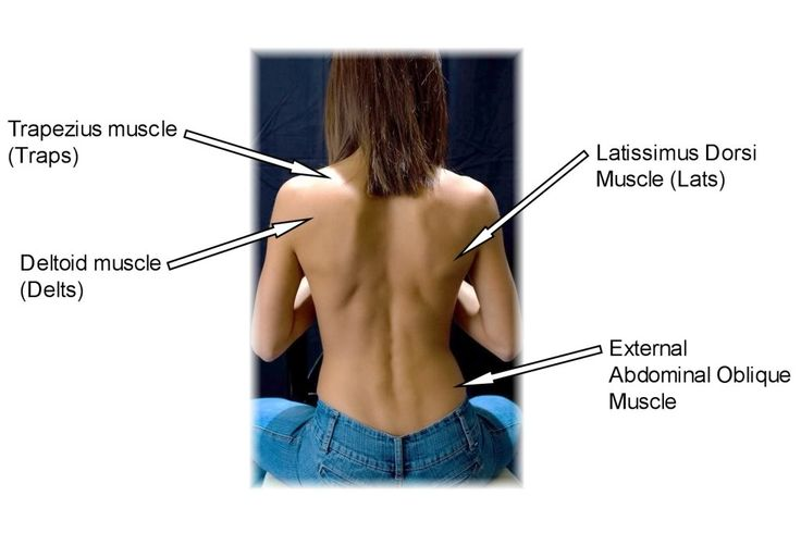 Gym Machine Workouts For Women | Back Exercises for Women