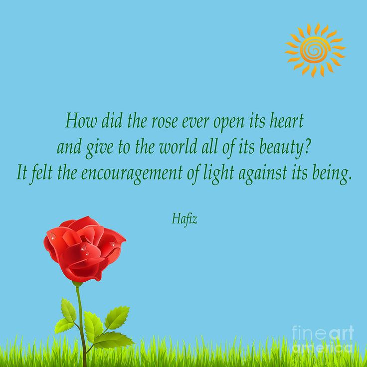 Hafiz Quotes: 17 Best Ideas About Hafiz On Pinterest