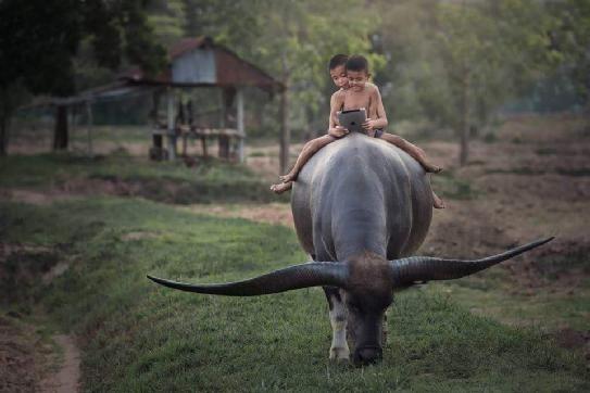 Gembala   Perasaan siapa tidak 'kan nyala   Melihat anak berlagu dendang   Seorang raja di tengah padang   Tiada berbaju buka ke...