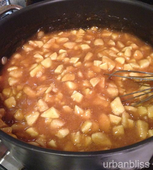 I just made this and it taste awesome!  Hubby approved! Freezer Apple Pie Filling Recipe
