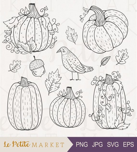Hey, I found this really awesome Etsy listing at https://www.etsy.com/listing/464900764/hand-drawn-pumpkin-clip-art-set