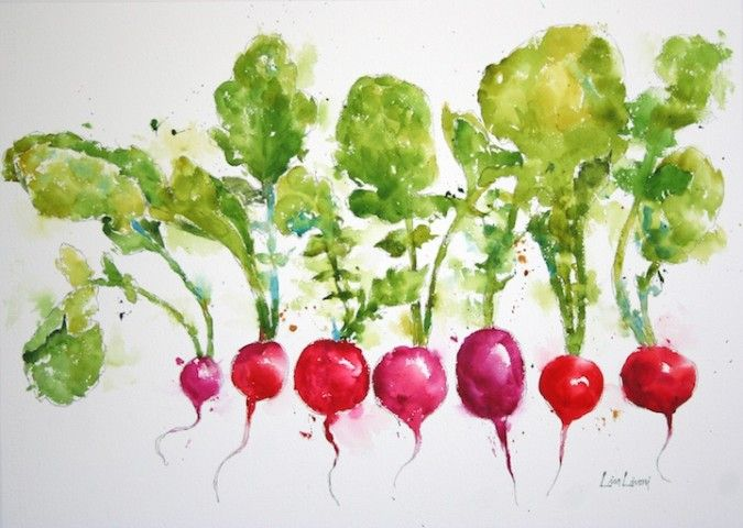 red, radishes, vegetables, seven, Napa Valley, Farmers Market, watercolor painting, fine art, Lisa Livoni