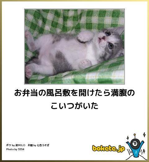ユキマサ@福の神(@toku77777)さん | Twitter