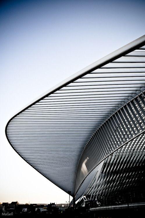 Gare des Guillemins by Santiago Calatrava (Via: www.pinterest.com/AnkApin/abstract-piece-of-tecture)