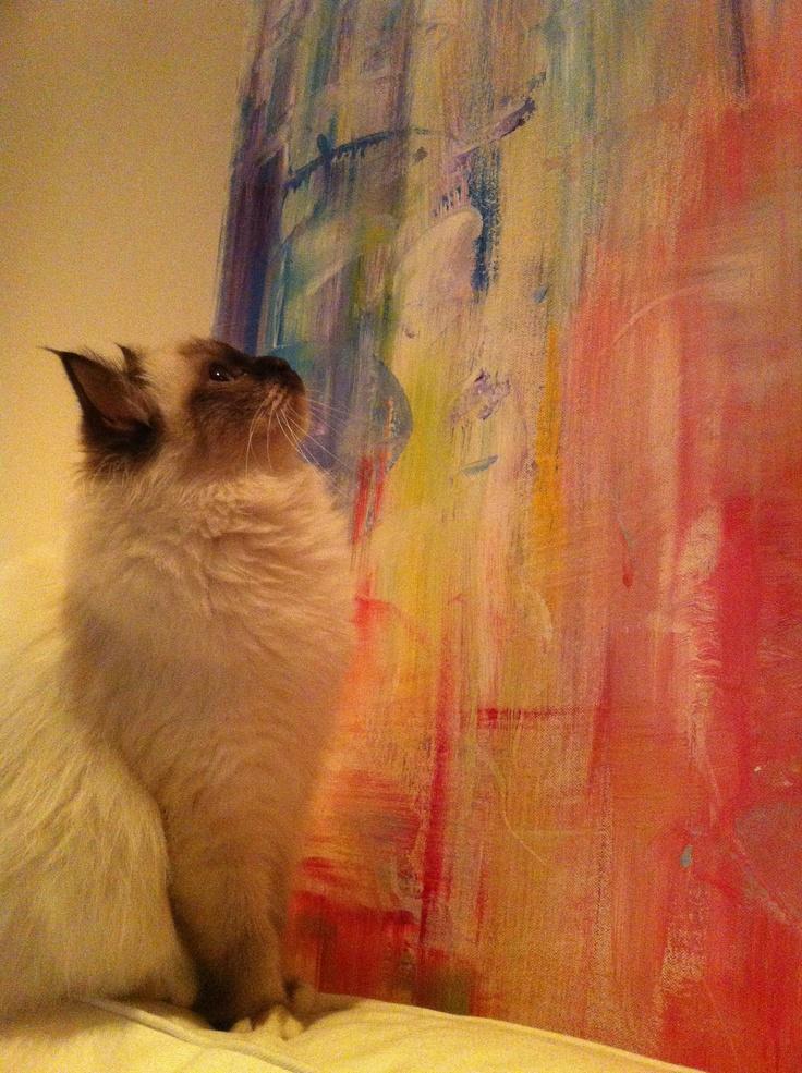 cat admiring artwork:)