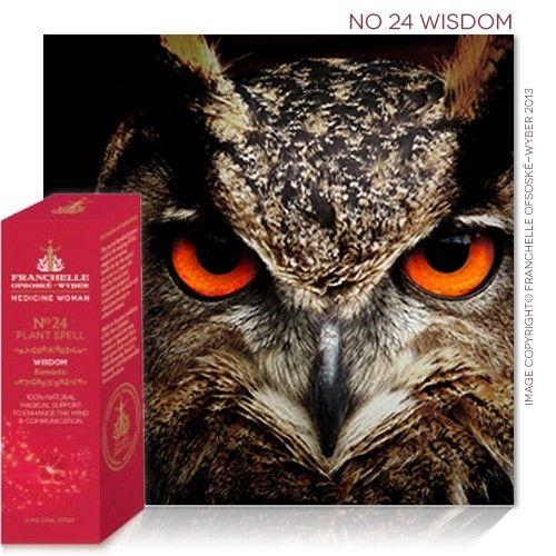 No 24 Wisdom Spell