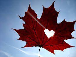 Maple Leaf Love Spells www.lovespellscasting.com/maple-leaf-love-spells.html
