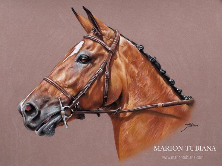 (133) Tubiana Marion - Pastels et photographies