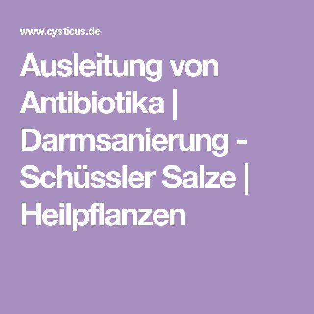 Ausleitung von Antibiotika | Darmsanierung - Schüssler Salze | Heilpflanzen