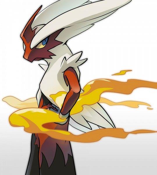 61 best blaziken images on pinterest mega evolution pokemon party and pokemon stuff - Pokemon mega evolution blaziken ...