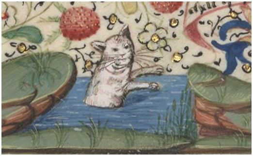 "Cat having a swim -- Perhaps alluding to a Medieval French proverb, ""Aussi aise que ung chat qui ce baingne"" - ""As uneasy as a bathing cat"".-- BnF Horae ad usum Rothomagensem http://gallica.bnf.fr/ark:/12148/btv1b6000424g/f42.item.r=horae.langEN"