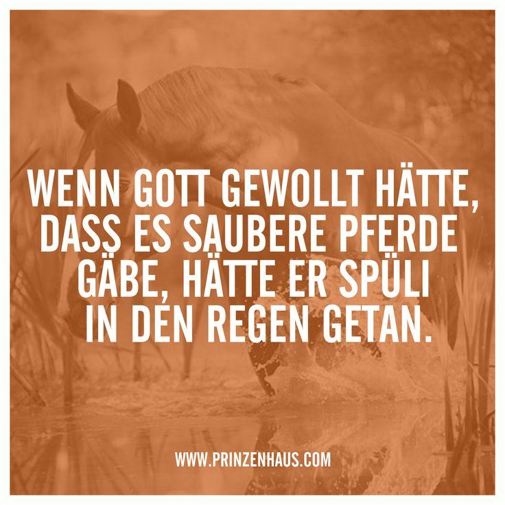 www.prinzenhaus.com WENN GOTT GEWOLLT HÄTTE, DASS ES SAUBERE PFERDE GÄBE, HÄTTE ER SPÜLI IN DEN REGEN GETAN.