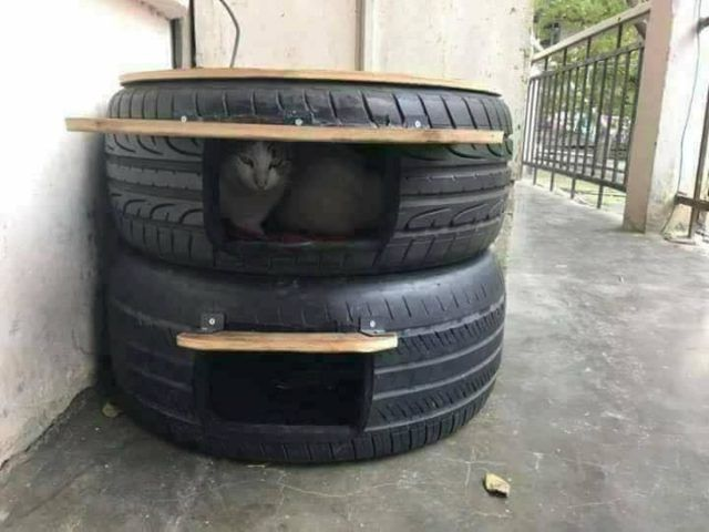 Diy Outdoor Cat Shelters For The Cold Season Outdoor Cat Shelter Cat Shelter Outdoor Cats