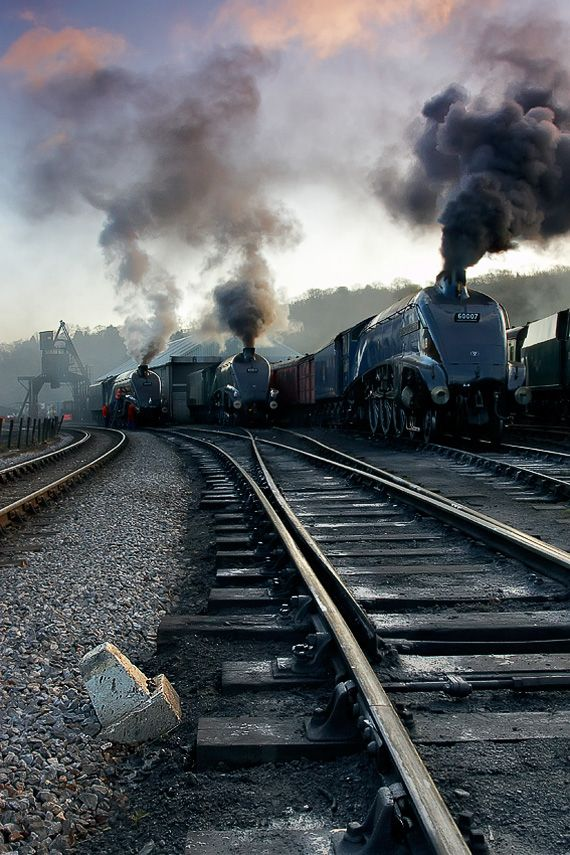 Steam Engines ~ Three Gresley A4's are prepped for morning service and sit by the engine sheds 'warming through'. Taken in the yard at Grosmont on the North Yorkshire Moors Railway [NYMR] very early one summer morning by Paul Sutton.