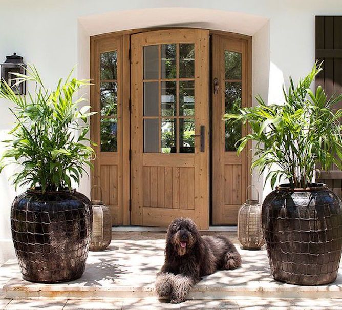 Best 25+ Brown Front Doors Ideas That You Will Like On