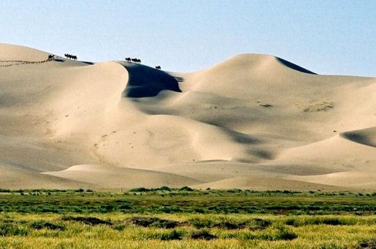 """Gobi désigne en mongol un territoire aride en opposition avec """"tsöl"""", le désert. Le désert de Gobi renferme en effet de nombreux paysages différents : des plaines vastes, des chaînes de montagnes ainsi que des dunes de sable"""