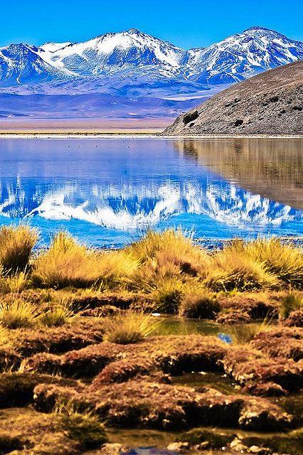 Santa Rosa Lagoon, volcano Tres Cruces, Chile ♥ ♥ www.paintingyouwithwords.com