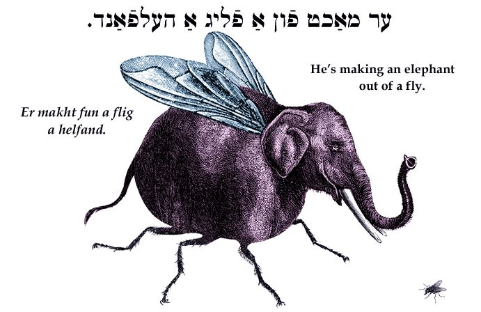 Yiddish: He's making an elephant out of a fly.