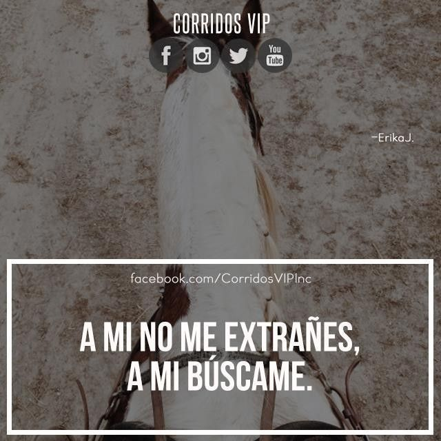53 Best Corridos Vip Images On Pinterest Frases En Epicgaming