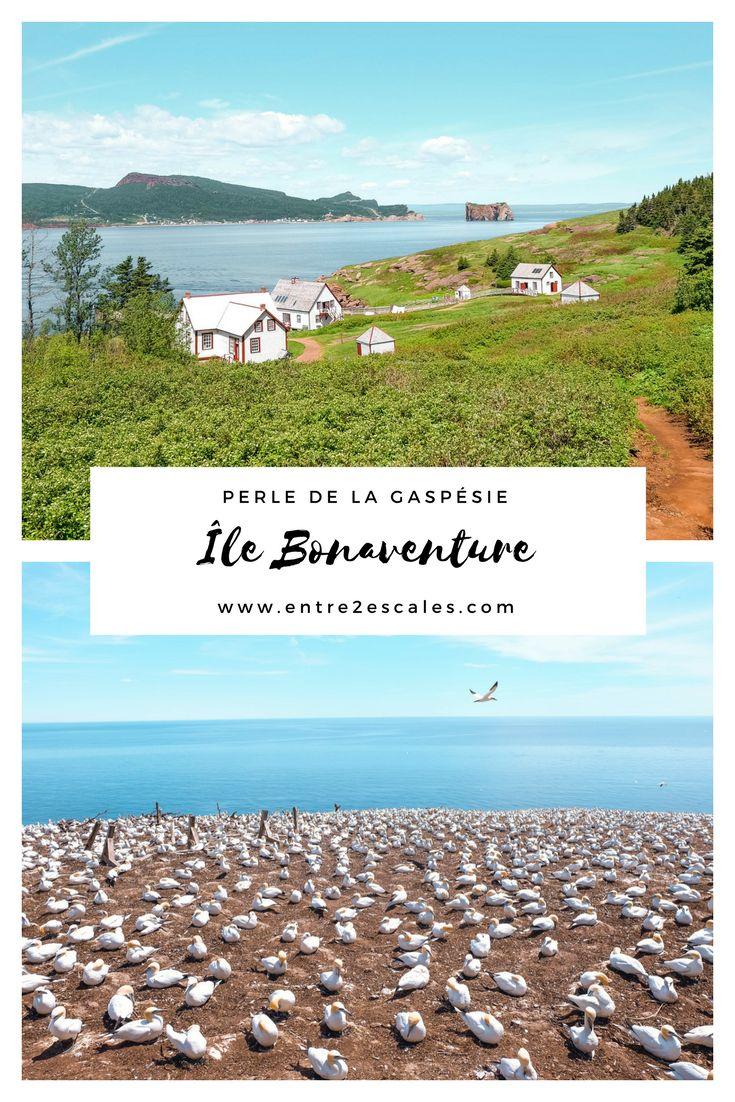 QUÉBEC  L'Île Bonaventure, la perle de la Gaspésie ~ ENTRE 2 ESCALES