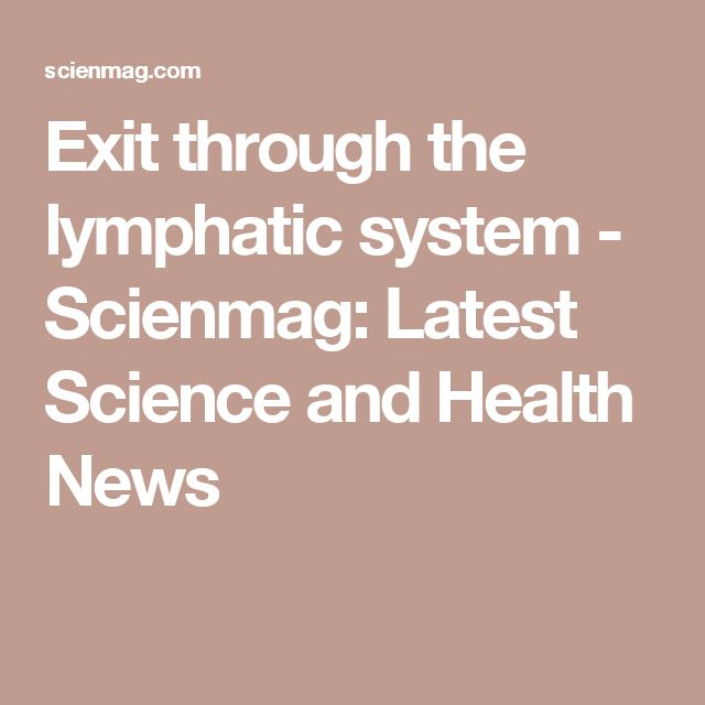 Exit through the lymphatic system - Scienmag: Latest Science and Health News