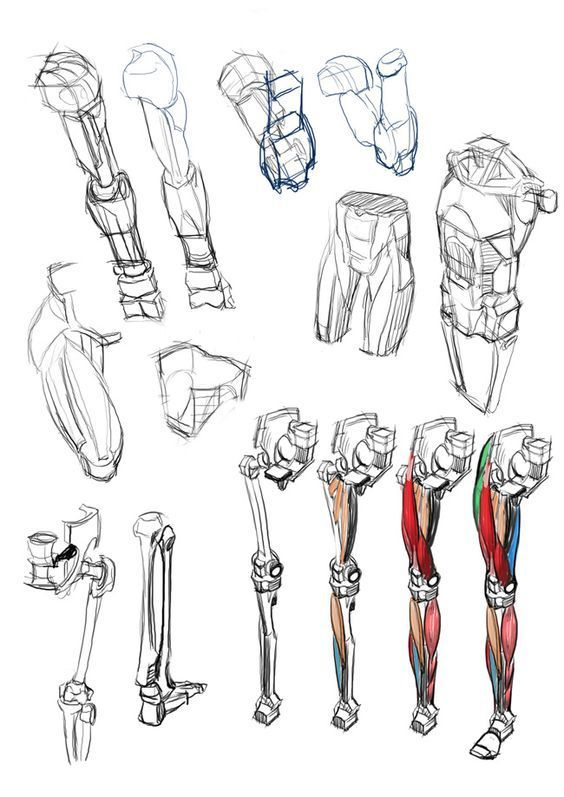 Character Design Collection: Legs Anatomy