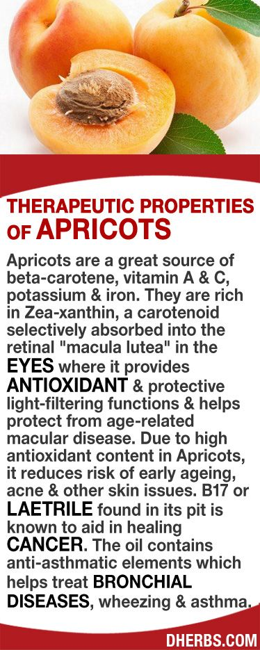"""Apricots are a great source of beta-carotene, vitamin A & C, potassium & iron. They are rich in Zea-xanthin, that is absorbed into the """"macula lutea"""" in the eyes where it provides antioxidant & protective light-filtering functions & helps protect from AMD. Due to high antioxidant content in Apricots, it reduces risk of early aging, acne & other skin issues. Laetrile found in its pit aids in healing CANCER. The oil has anti-asthmatic elements which helps treat bronchial diseases & asthma…"""