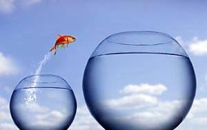 Life coachinggal sokkal könnyebb előre jutni az életben.