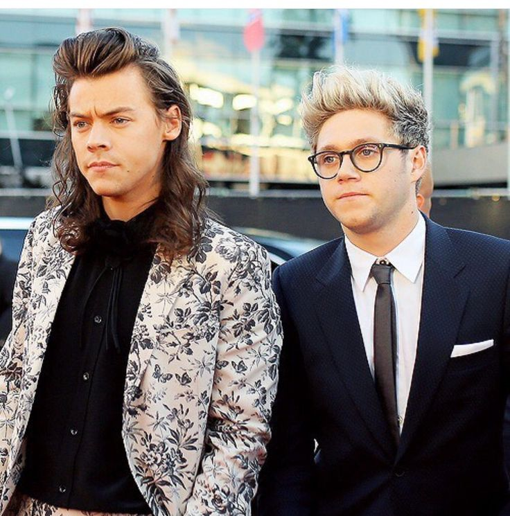 Harry Styles and Niall Horan 2015 #1D