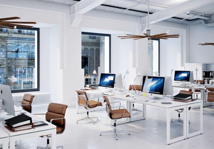 фото светлого офиса могут делиться секретами
