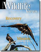 Arizona Wildlife Views magazine, the official magazine of the Arizona Game and Fish Department