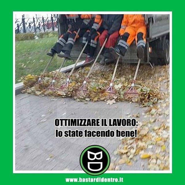 #bastardidentro #foglie #lavoro www.bastardidentro.it