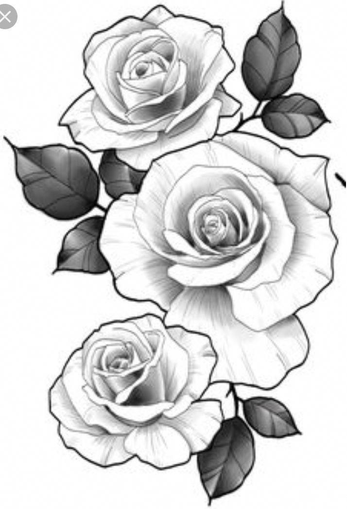Samoan Tattoos Rose Drawing Tattoo Flower Tattoo Designs