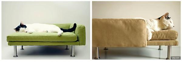 Muebles para gatos - Galería de Imágenes - ExpertoAnimal