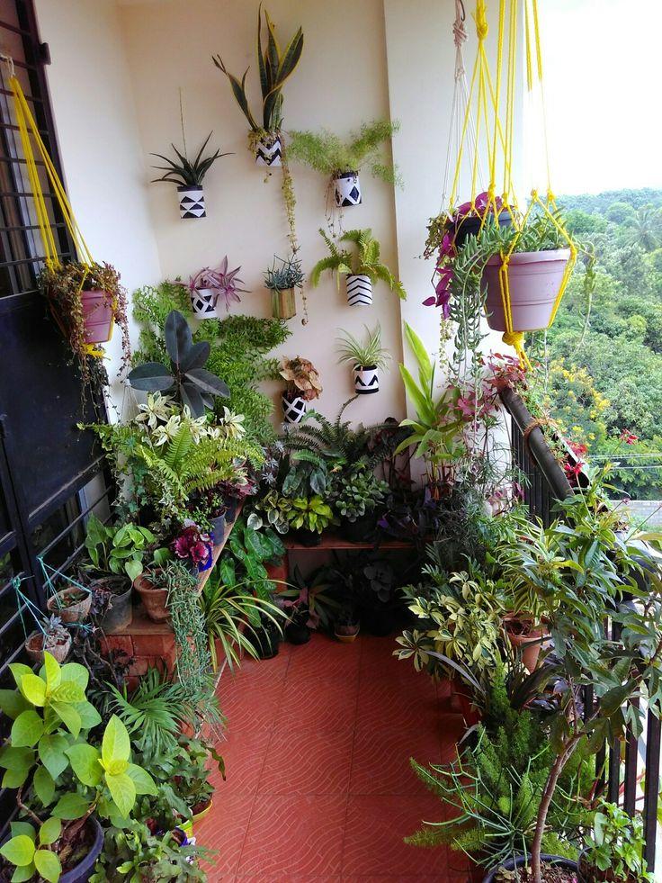 The 25 best small balcony garden ideas on pinterest for Terrace garden meaning