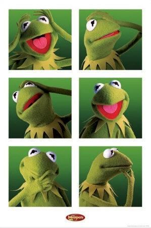 Kermit faces