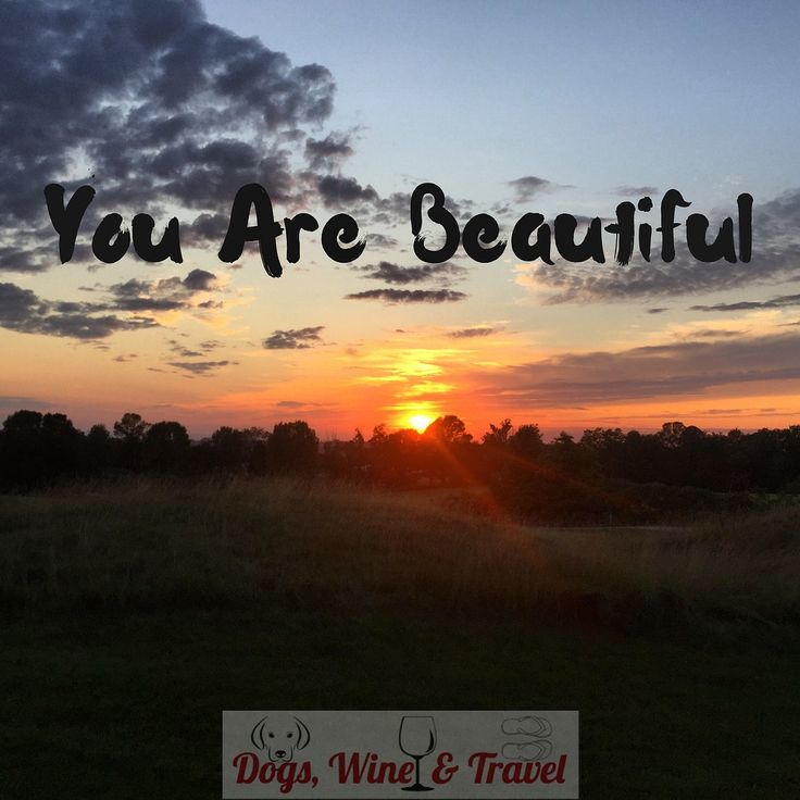 Live your best life. Visit dogswineandtravel.com for living, laughing, and travelling well suggestions