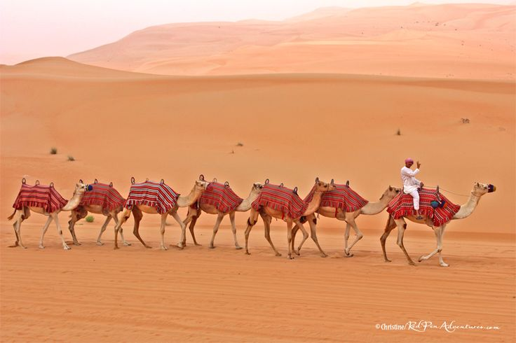 """""""Connected in Peace"""" at The Empty Quarter Desert in Abu Dhabi, UAE"""