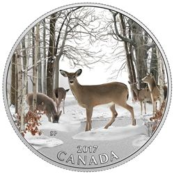 2017 $10 spring sightings - pure silver coin.