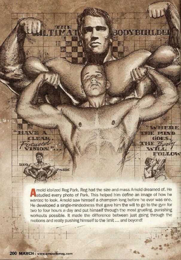 bodybuilding training program with picture pdf