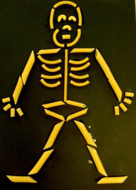 skelet van pasta - Google zoeken | ziek zijn - Menselijk ...