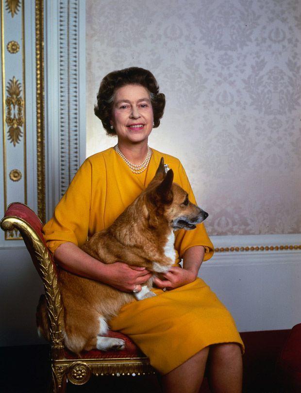 The Queen with a corgi