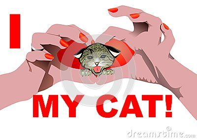 I love my Cat isolated on white with Heart shaped hand position and kitty head in the heart.  Vector illustration.