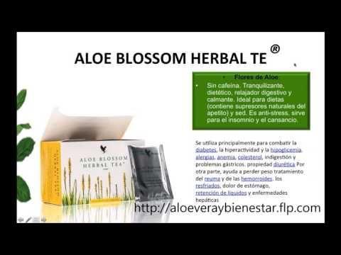 Té para bajar el azucar |Aloe Blossom Herbal Tea En español Dr Juan Canelon