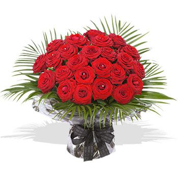 TI Amo - flowers Love, romance, passion are all emotions that this bouquet of two dozen luxury red roses, adorned with diamante pins, will send for you. This beautiful bouquet is hand-tied and your message and intenti http://www.comparestoreprices.co.uk/flowers-and-flower-delivery/ti-amo--flowers.asp